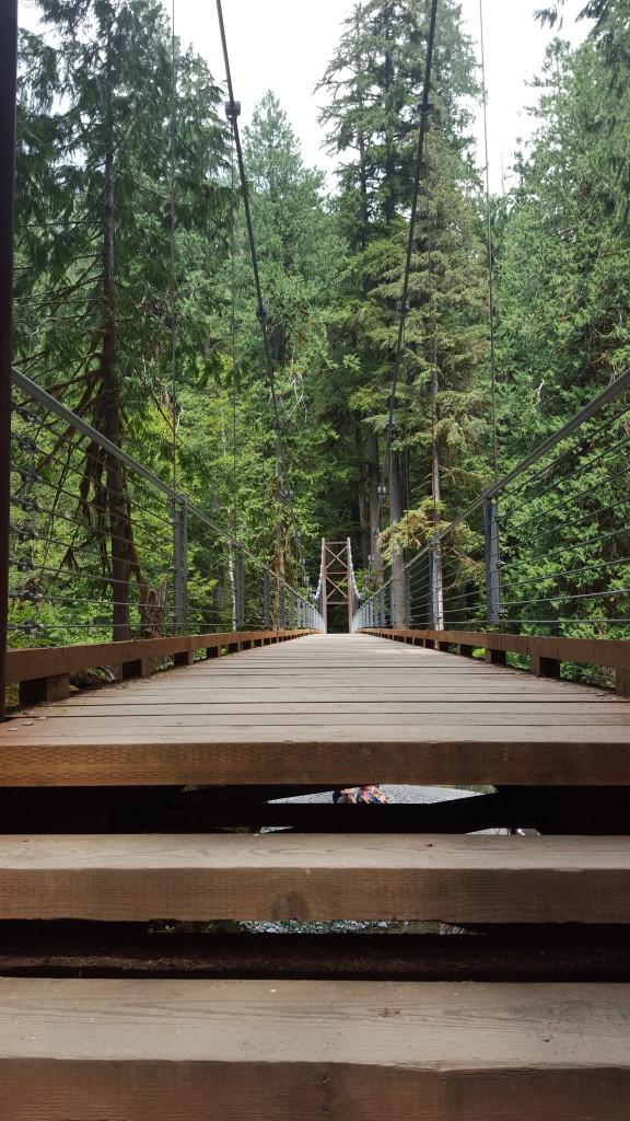 Northwest Pearls: North Fork Skokomish River Bridge