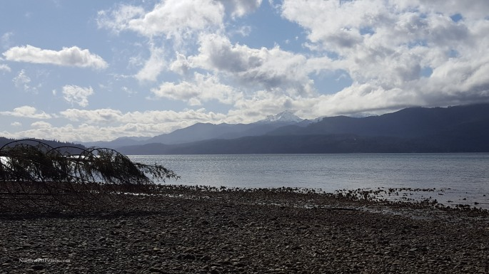 Northwest Pearls: Guillemot Cove